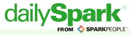 Daily Spark Logo