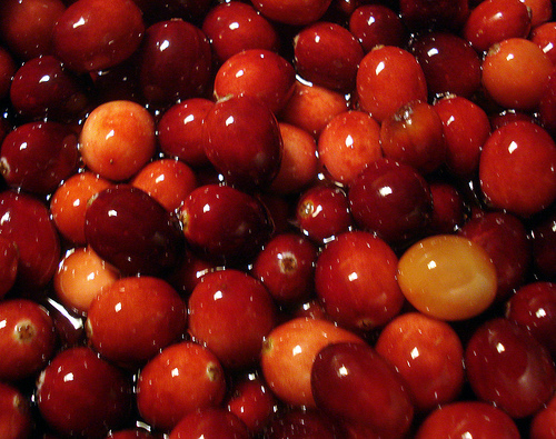 Cranberries Picture